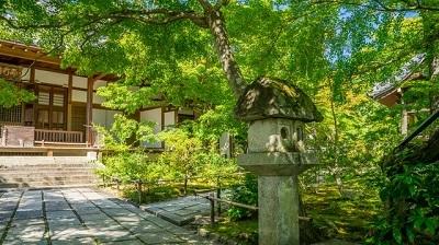 古民家移築再生、社寺仏閣設計施工を専門とする工務店(県外)